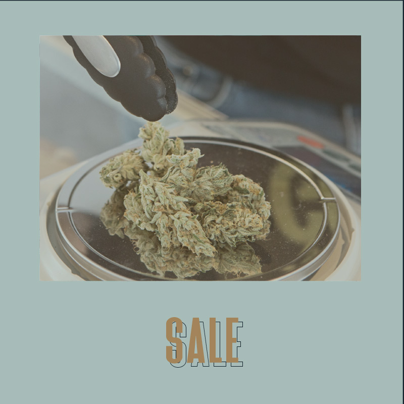 cannabis instagram brand kit